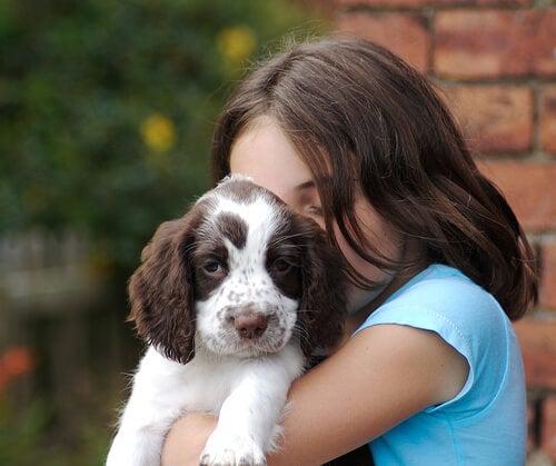 Videnskaben har bevist at hunde har følelser