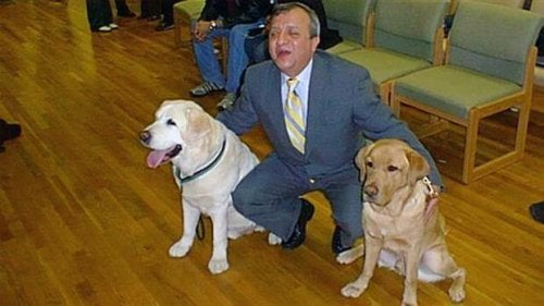 Førerhunden som reddede sin ejers liv