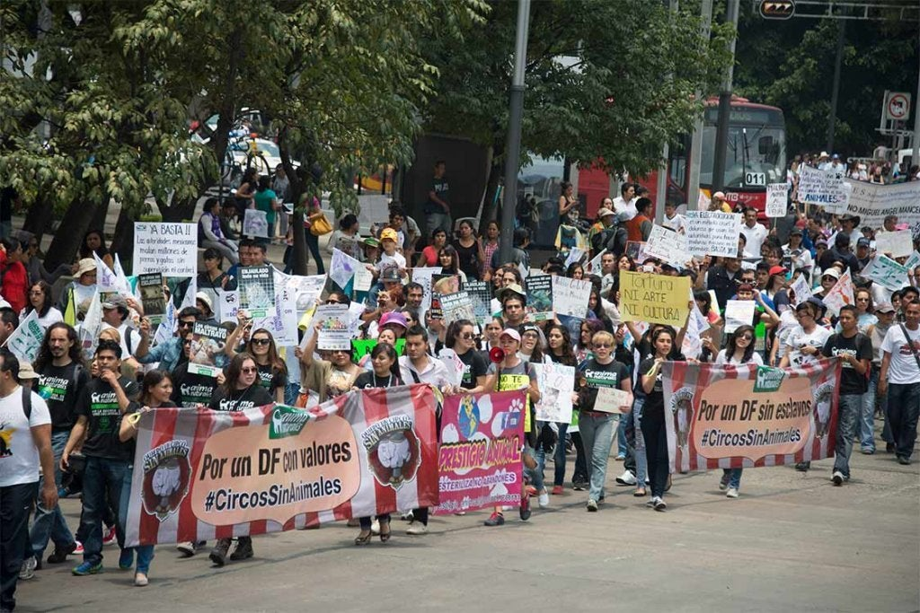 march med slogans