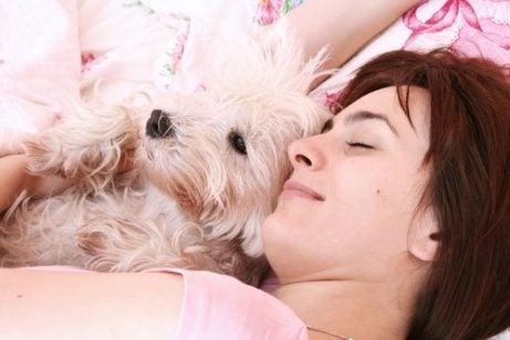 man sover bedre med en hund