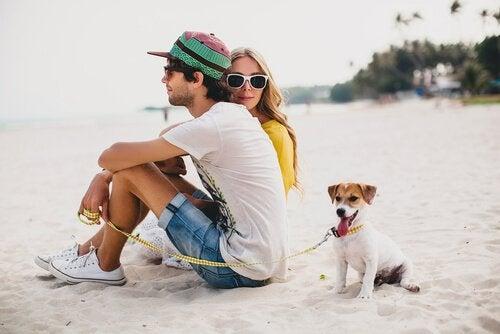 Hundetur med din hund