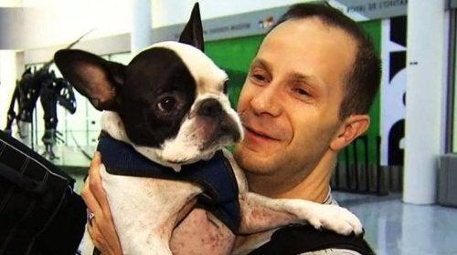 Piloten, der reddede en hund