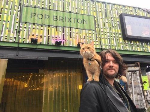 Historien om James Bowen og hans omstrejfende kat Bob