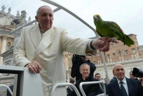 Hvad tænker pave Frans om dyr?