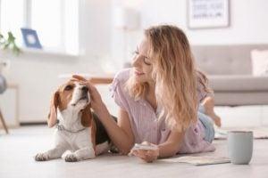 Hunde elsker at blive aet af deres ejer