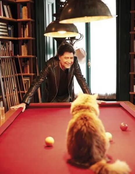 Kat sidder på et poolbord og kigger på Sabina