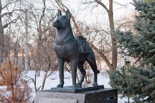 Statue af redningshund.