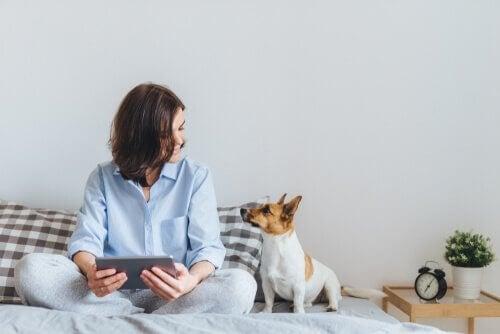 Hund kigger på sin ejer, mens de sidder i sengen