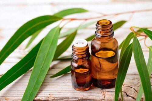 Du kan anvende eukalyptus og urter i dine insektmidler