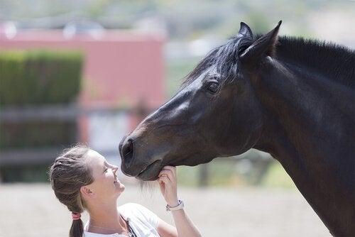 Temple Grandin sammen med hest