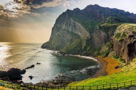 På Jeju-øen i Sydkorea findes der flere lokale og eksotiske arter, såsom den lyserøde fisk