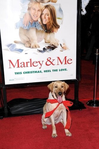 plakat fra filmen MArley and Me