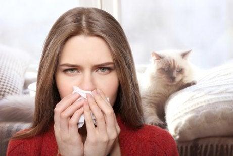 kvinde, der har allergi over for katte