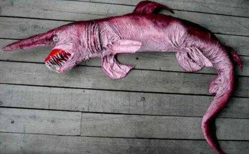 Hajen svømmer i meget dybe farvande