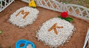 Begravelse af dyr