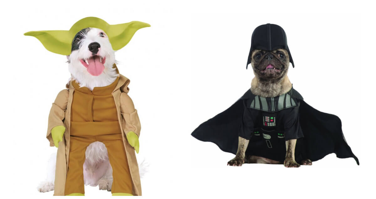 Hunde med Star Wars kostumer på