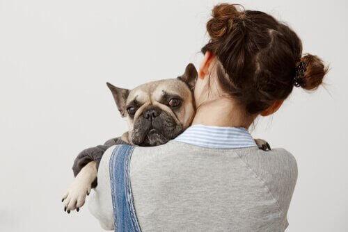 Hund hviler sig på kvindes skulder