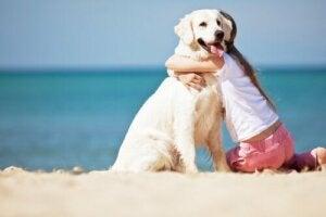 Kvinde på strand i færd med at kramme en hund