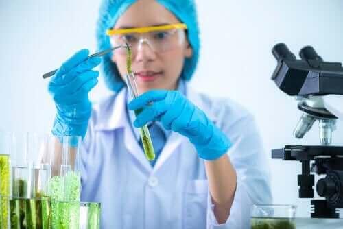 Kvinde i laboratorium laver spirulina til hunde