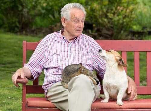 Mand med hund og kat på bænk i have