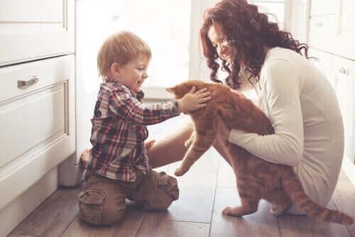 Kæledyrs indflydelse på menneskers liv