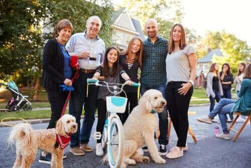 Hunde og naboer: Pli og regler