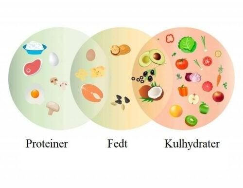Proteiner, fedt og kulhydrater