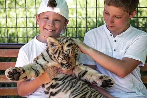 Kan man have vilde dyr som kæledyr?