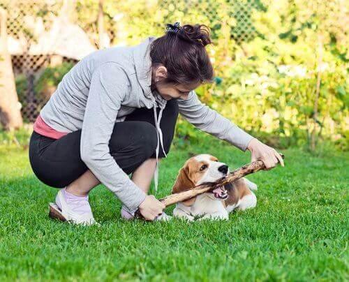 Pige leger med sin hund i haven