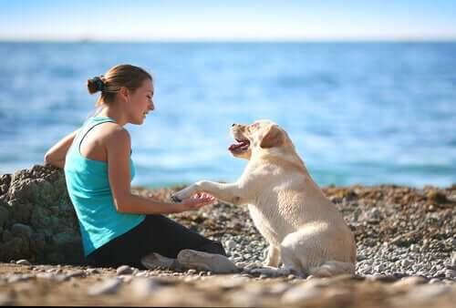 kvinde med hund på stranden