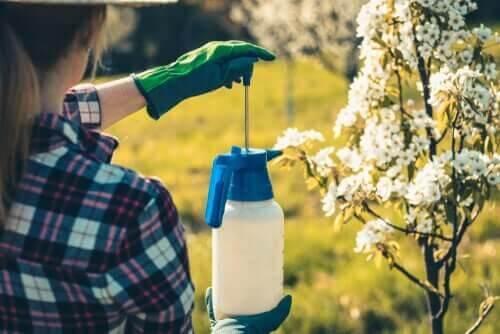 Kvinde bruger pesticider i haven
