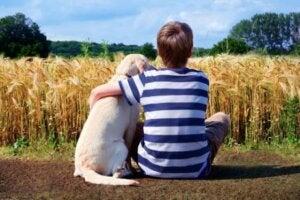 Hund og dreng kigger på mark