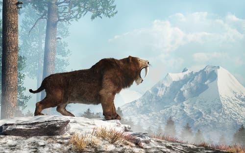 Sabelkatten levede i den Pleistocæne æra