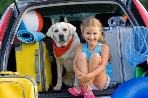 Pige og hund i bil med kufferter