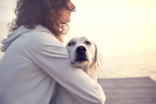 Kvinde, der krammer hund, symboliserer smukke citater om hunde