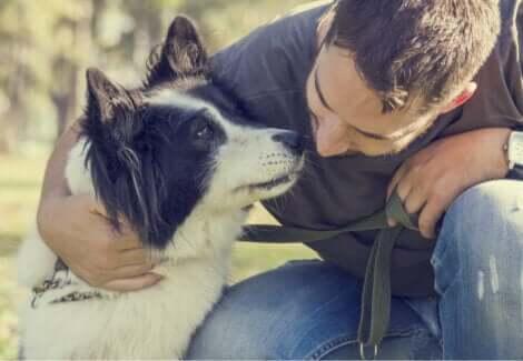 Hund med ejer