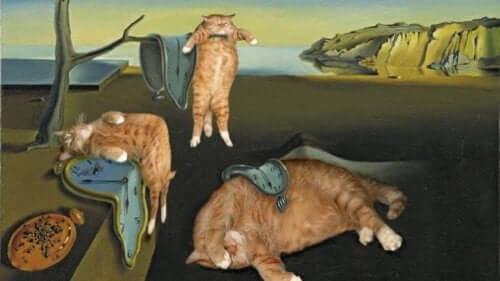Maleri med katte