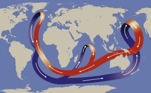 Illustration af, at strømme påvirker liv i havet
