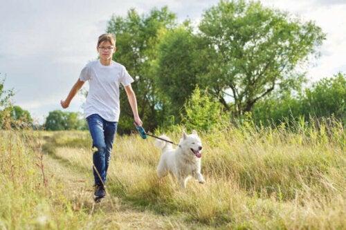 Daglige gåture for hunde vil snart blive lovpligtigt i Tyskland