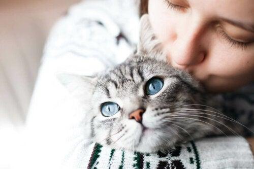 En kats sociale interaktion illustreres af kvinde, der kysser kat