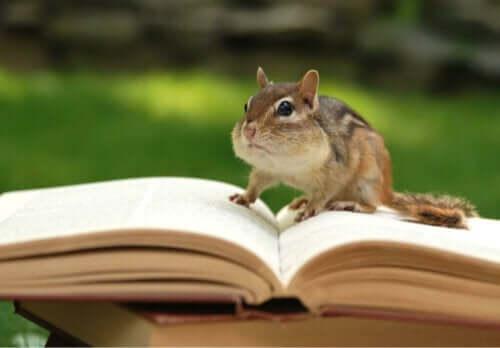 9 bøger om zoologi, du bør læse