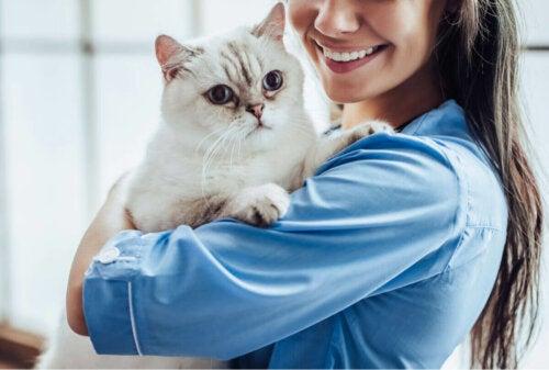 Smilende dyrlæge med kat i armene