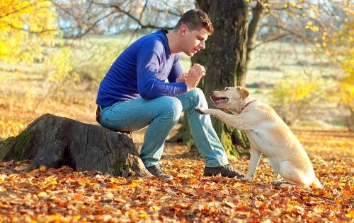 Ung mand snakker med hund i skov
