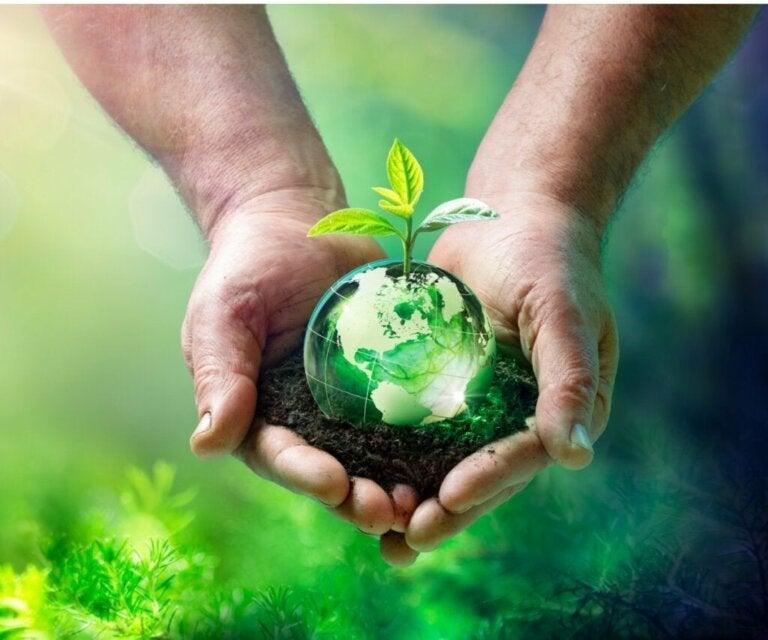 Økologisk balance: Hvad er det, og hvilke faktorer ændrer det?