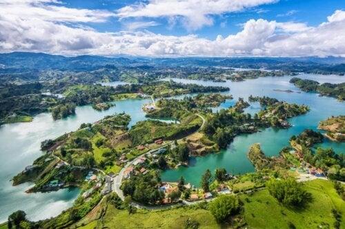Colombia er stedet for en af de bedste dyredokumentarer
