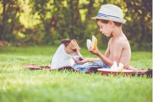 Dreng og hund er eksempel på, at hunde kan spise melon