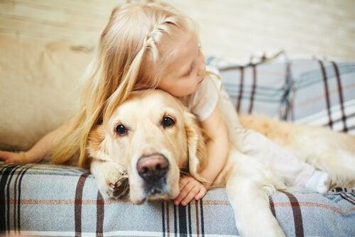 Varoitus: älä anna halauksia koiralle!