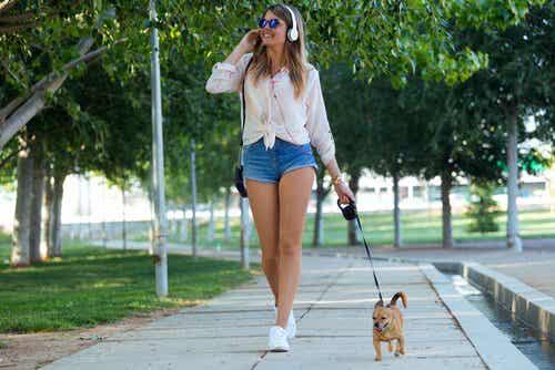 5 syytä, miksi koirasi ansaitsee laadukkaita kävelylenkkejä