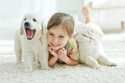Lemmikki parantaa lapsen terveyttä monella tapaa