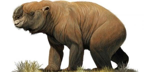 Sukupuuttoon kuolleet Australian jättiläiseläimet